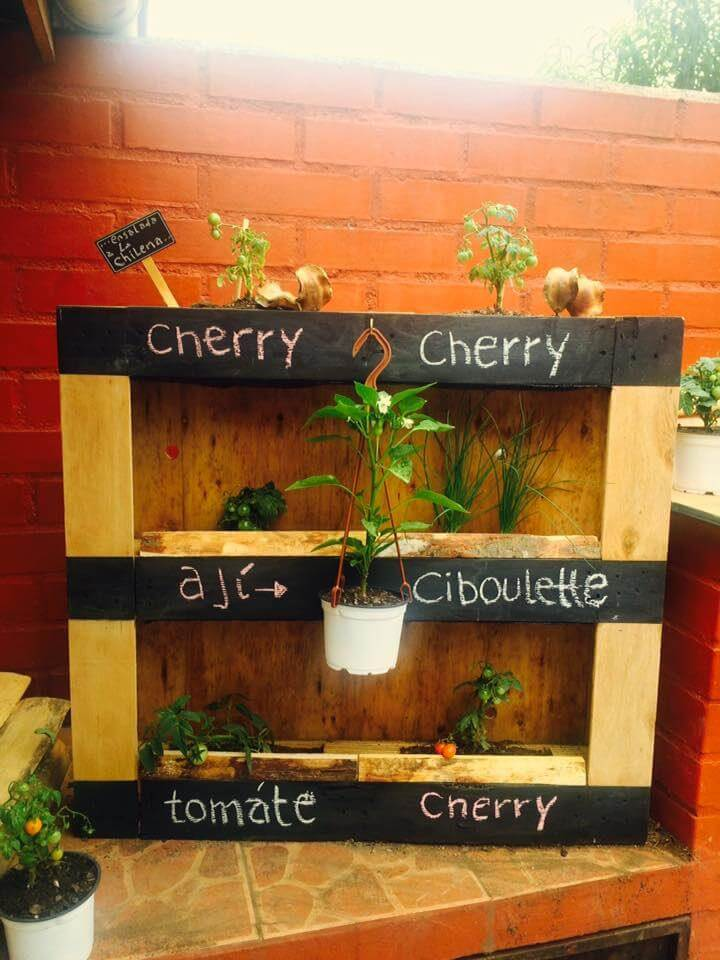 cute pallet wall planter